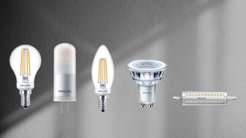 Lampadine LED Patrizia Volpato