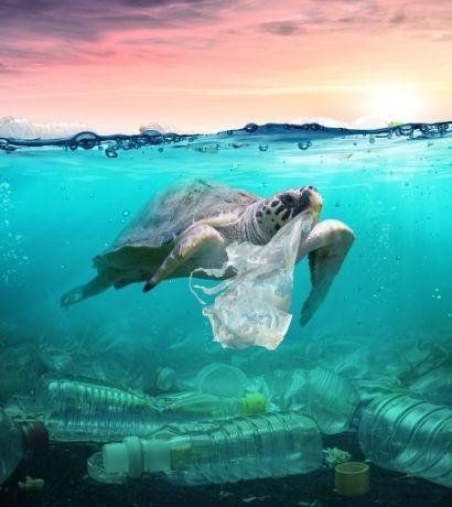 Tartaruga che nuota nell'oceano con un sacchetto di plastica in bocca