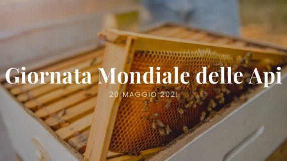 Giornata mondiale delle api 2021 - Patrizia Volpato