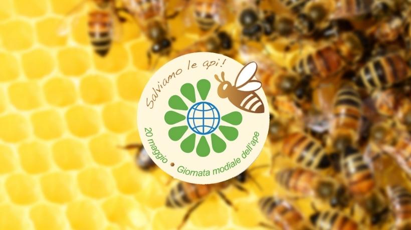 Logo salviamo le api - Giornata Mondiale Api 2021 - Patrizia Volpato
